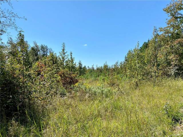 Lot 5 Cary's Creek Road, Fork Union, VA 23055 (MLS #2030357) :: The Redux Group
