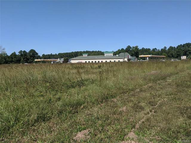 9800 Pouncey Tract Road, Goochland, VA 23059 (MLS #2031297) :: The Redux Group