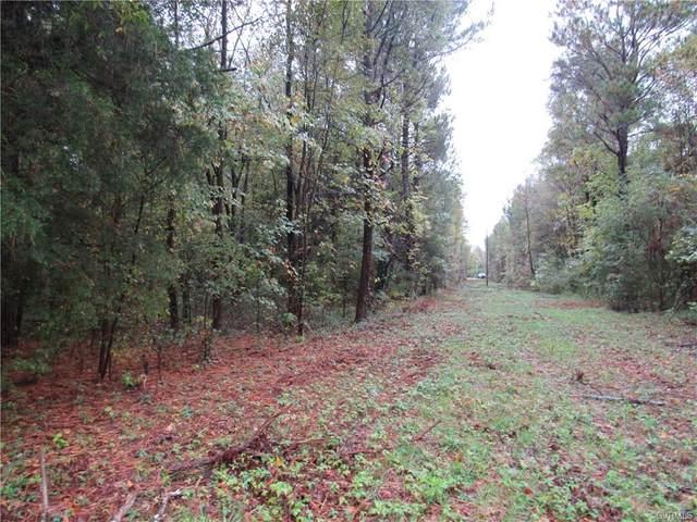 10472 Old Ridge Road, Ashland, VA 23005 (MLS #2032651) :: EXIT First Realty