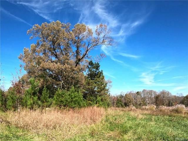 16054 Woodlong Lane, Hanover, VA 23192 (MLS #2033859) :: The Redux Group
