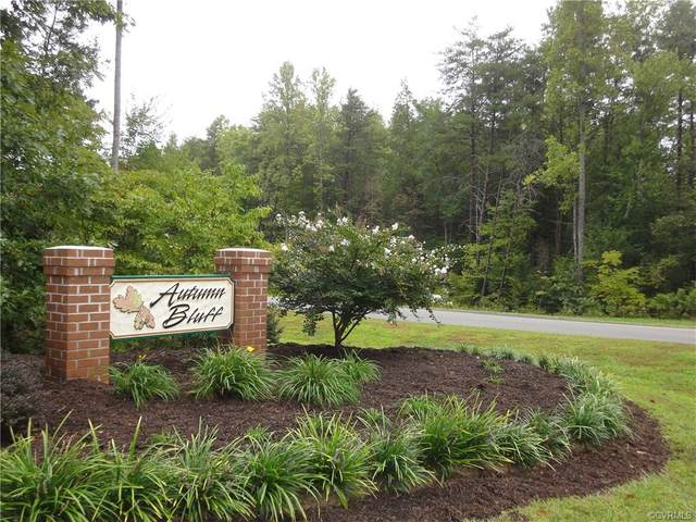 6123 Autumn Bluff Road, Powhatan, VA 23139 (MLS #2035254) :: The Redux Group
