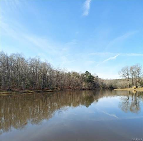 4421 Windsor Lake Drive, Louisa, VA 23093 (MLS #2035739) :: The Redux Group