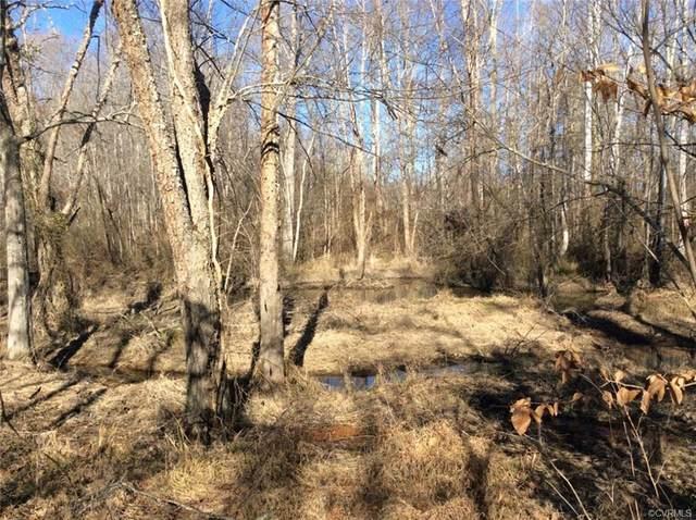 Lot 1 Cedar Hill Road, Mineral, VA 23117 (MLS #2101439) :: Treehouse Realty VA