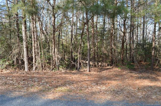 050 Mallard Bay Drive, Heathsville, VA 22473 (MLS #2101711) :: Treehouse Realty VA