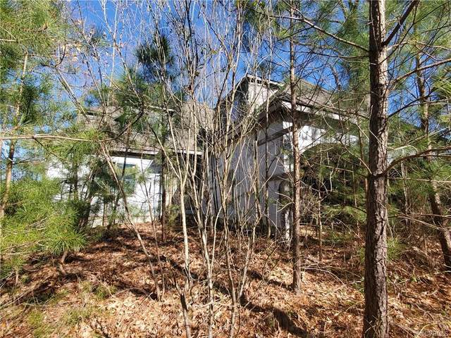 xxx Ferry Road, Ophelia, VA 22530 (#2102662) :: The Bell Tower Real Estate Team