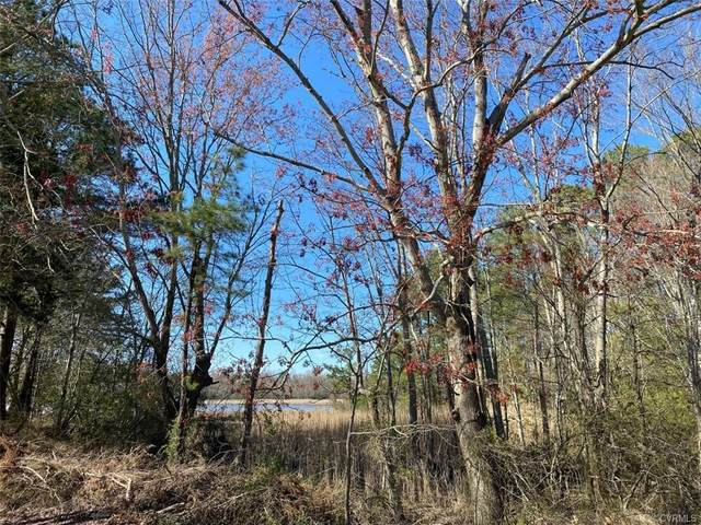 000 Cedar Point Road, Warsaw, VA 22572 (MLS #2108831) :: Village Concepts Realty Group