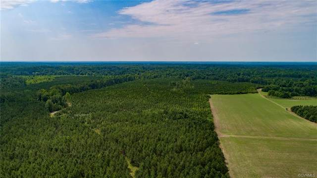 00 King William Road, Hanover, VA 23069 (MLS #2109024) :: Village Concepts Realty Group
