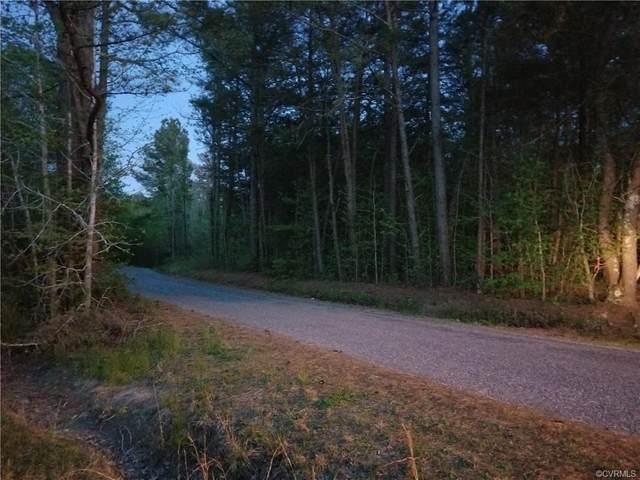 000 Zion Branch Road, Saluda, VA 23149 (MLS #2111152) :: Village Concepts Realty Group