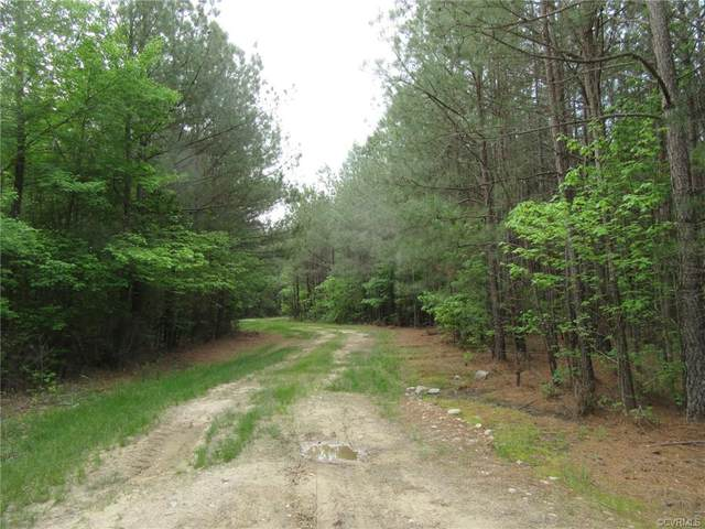 84-A-21 Woodyard Road, Stony Creek, VA 23882 (MLS #2112413) :: Treehouse Realty VA