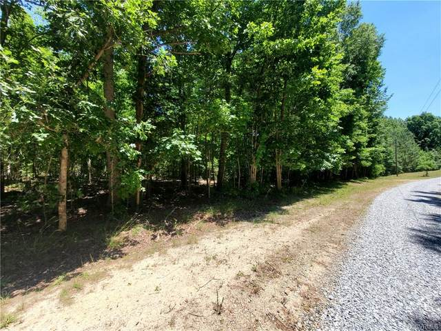 13.66 Acres Johnson Road, Jetersville, VA 23083 (MLS #2117894) :: Small & Associates