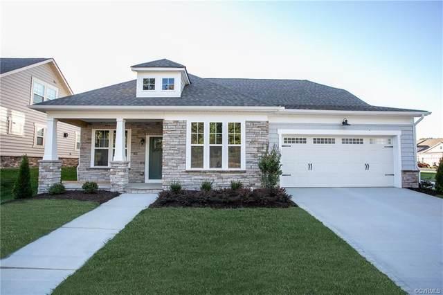 15902 Lewisham Drive, Moseley, VA 23120 (MLS #2117941) :: EXIT First Realty