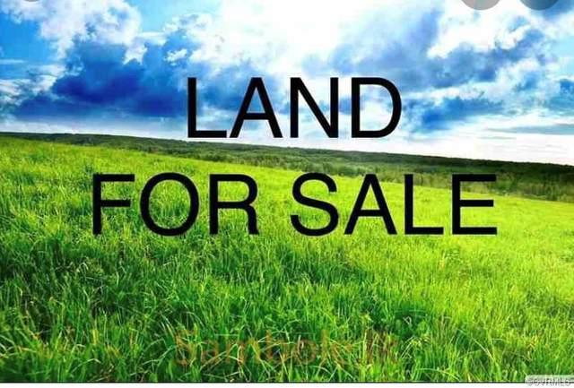 00 Weyanoke Road, Charles City, VA 23030 (MLS #2118588) :: Village Concepts Realty Group
