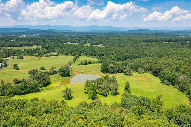 0 Holly Hill Farm Lane, Reva, VA 22735 (MLS #2122931) :: Treehouse Realty VA