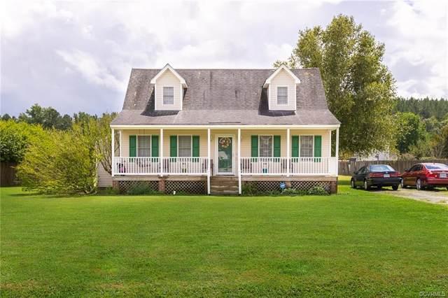 23305 Pear Tree Lane, Dinwiddie, VA 23803 (MLS #2124916) :: Village Concepts Realty Group