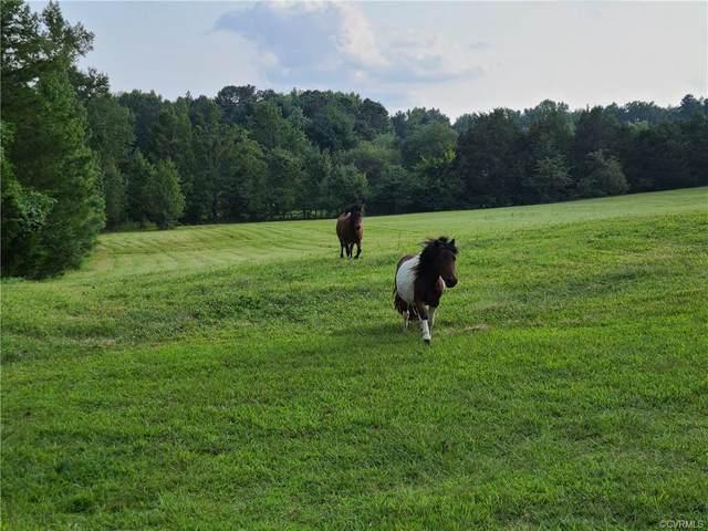 11133 Sherwood Farms Lane, Hanover, VA 23059 (MLS #2126671) :: Blake and Ali Poore Team