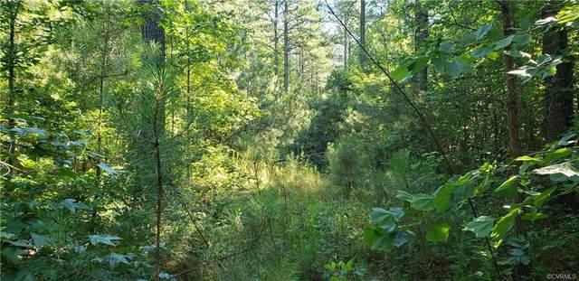 0000 Parsons Road, Beaverdam, VA 23015 (MLS #2129527) :: Treehouse Realty VA