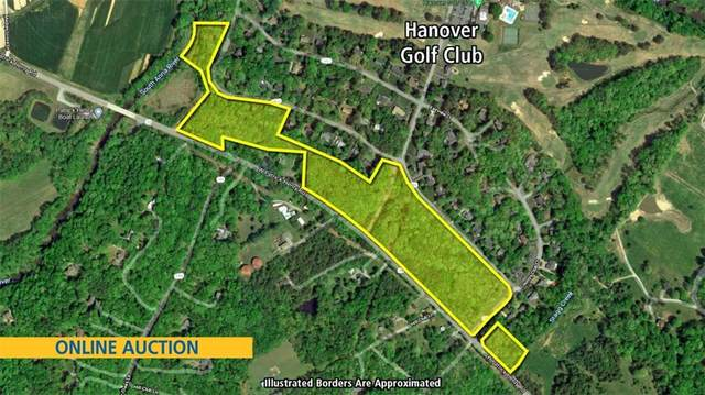 13036 W Patrick Henry Road, Montpelier, VA 23192 (MLS #2130558) :: Village Concepts Realty Group