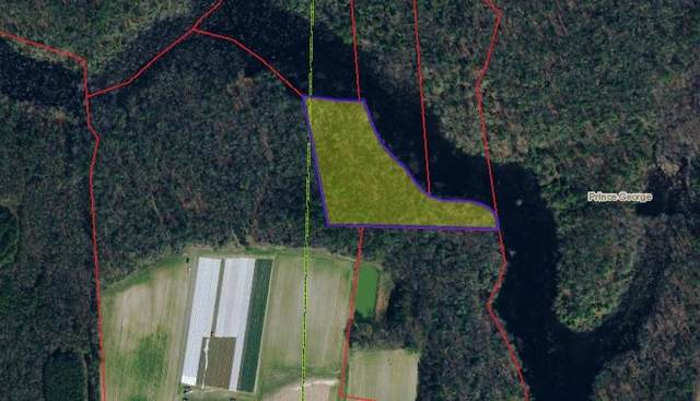 5 AC Spain Drive, Prince George, VA 23875 (MLS #2131625) :: Village Concepts Realty Group