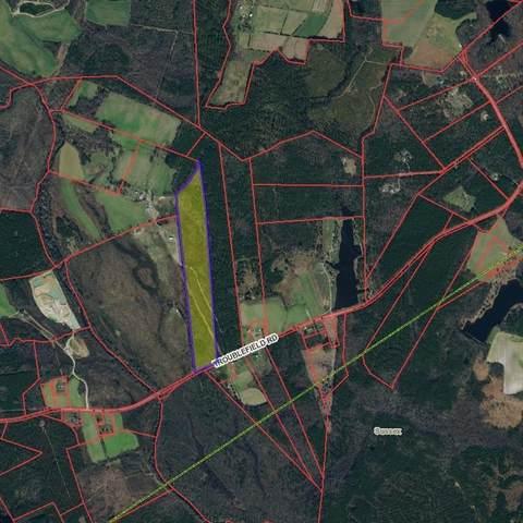 26714 Troublefield Road, Dinwiddie, VA 23882 (MLS #2132428) :: The RVA Group Realty