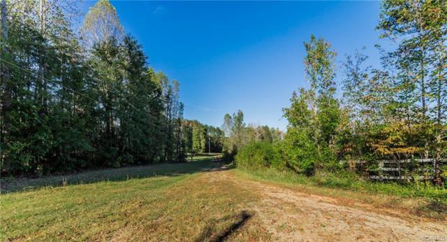 4077 Hidden Acres Drive, Louisa, VA 23093 (#1824253) :: Abbitt Realty Co.