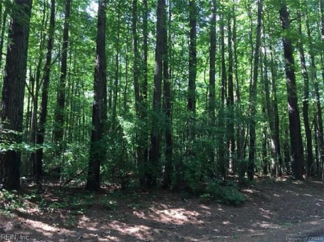 LOT 41 Wilton Creek Road, Hartfield, VA 23071 (#1827984) :: Abbitt Realty Co.