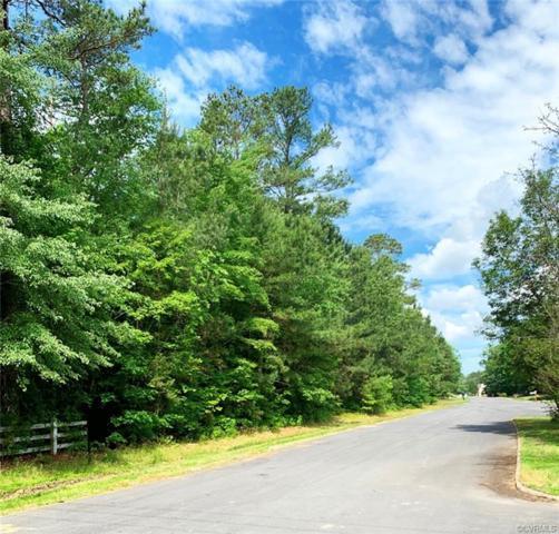 4029 Three Foxes Drive, Richmond, VA 23231 (#1915661) :: Abbitt Realty Co.