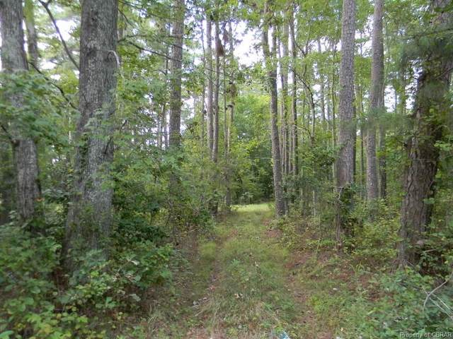 9167 A Guinea Road, Hayes, VA 23072 (MLS #2029215) :: Treehouse Realty VA