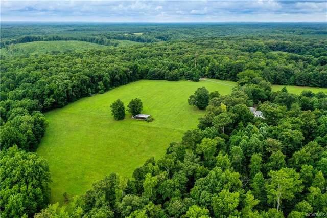 12440 Bumpy Hollow Lane, Hanover, VA 23069 (MLS #2123020) :: Treehouse Realty VA