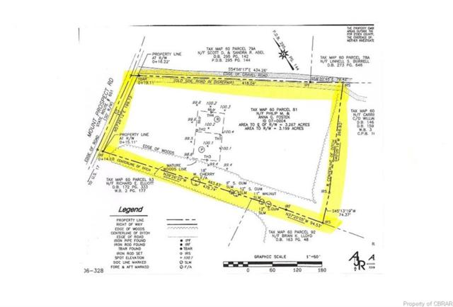 0 NE Mt Prospect Road Rt 601 Road, Center Cross, VA 22438 (MLS #1625512) :: Village Concepts Realty Group