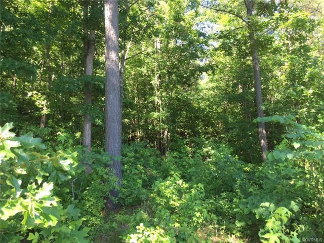 13445 Palmer's Way, Glen Allen, VA 23059 (#1835633) :: Abbitt Realty Co.