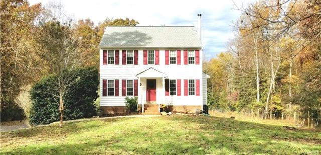4582 Newline Road, Goochland, VA 23065 (MLS #1838354) :: EXIT First Realty