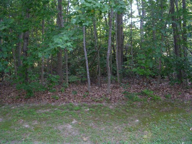 Lot 20 Wilton Cove Drive, Hartfield, VA 23071 (MLS #108786) :: RE/MAX Action Real Estate