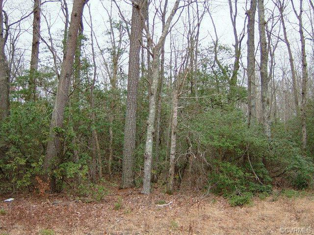 Lot 21 Presley Creek Drive, Heathsville, VA 22473 (#113395) :: Abbitt Realty Co.