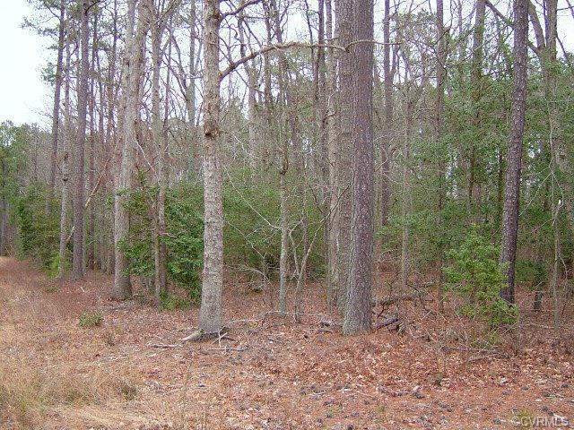 Lot 15 Presley Creek Drive, Heathsville, VA 22473 (#113397) :: Abbitt Realty Co.