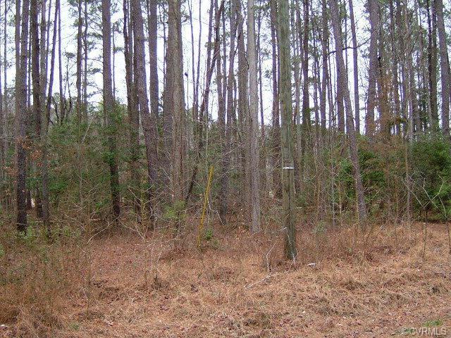 97,98 Presley Creek Drive, Heathsville, VA 22473 (#113399) :: Abbitt Realty Co.