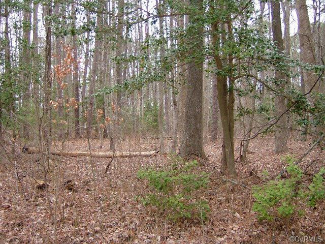 Lot 57 Cod Creek Drive, Heathsville, VA 22473 (#113402) :: Abbitt Realty Co.