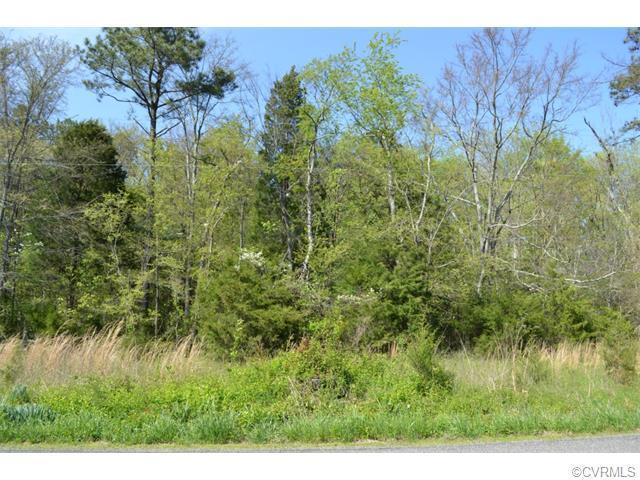 N/A Vontay Road, Rockville, VA 23146 (#1511559) :: Abbitt Realty Co.
