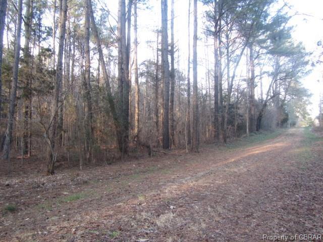 00 Old Pinetta Road, Gloucester, VA 23061 (#1622898) :: Abbitt Realty Co.
