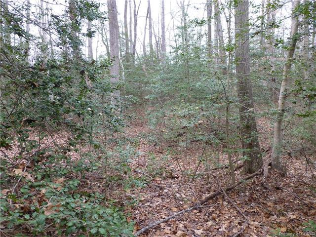 Lot 73 Wilton Coves Drive, Hartfield, VA 23071 (MLS #1701950) :: EXIT First Realty