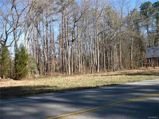 315 Rives Road, Petersburg, VA 23805 (MLS #1707596) :: The Ryan Sanford Team