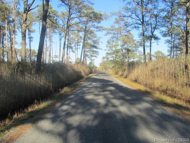 00 Jenkins Neck Road - Photo 1