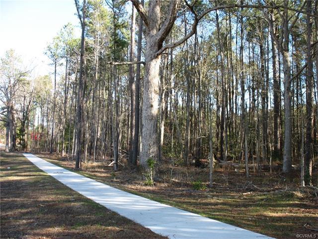 0000 S Crater Road, Prince George, VA 23805 (MLS #1709976) :: The Ryan Sanford Team