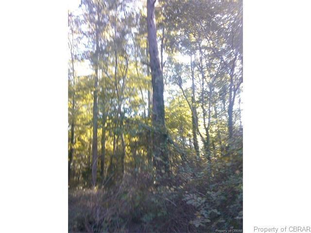 0 Kings Creek Road, Hayes, VA 23072 (#1711368) :: Abbitt Realty Co.