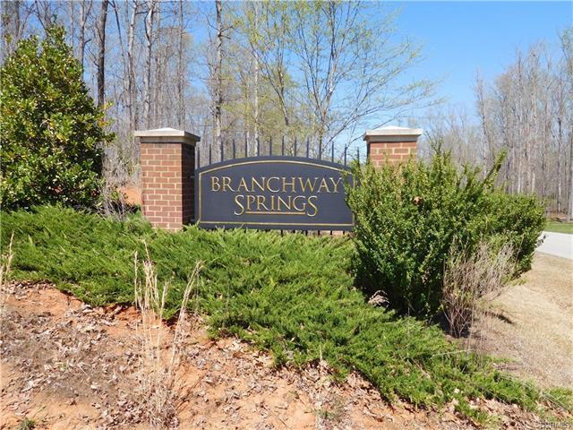 0 Branch Springs Road, Powhatan, VA 23139 (MLS #1712677) :: Chantel Ray Real Estate