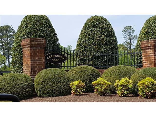 17544 Carrington Glen Lane, Rockville, VA 23146 (#1714162) :: Abbitt Realty Co.
