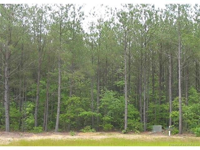 Lot 49 Plantation Place, Little Plymouth, VA 23091 (#1718887) :: Resh Realty Group