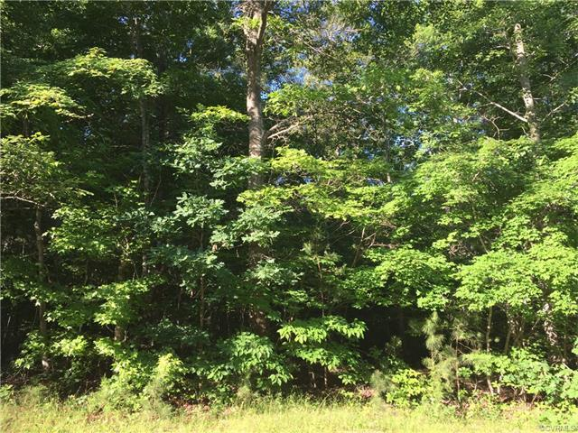 TBD Stokes Station Rd., Goochland, VA 23063 (MLS #1720692) :: The RVA Group Realty