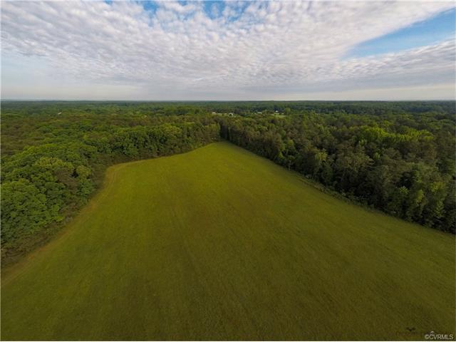 Lot 8 Shallow Well Road, Goochland, VA 23103 (MLS #1723537) :: The RVA Group Realty