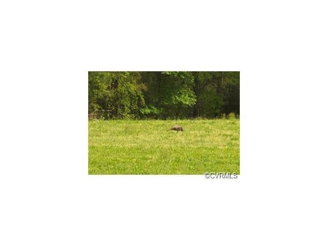 6995 Laurel Spring Road, Prince George, VA 23875 (#1723650) :: Resh Realty Group