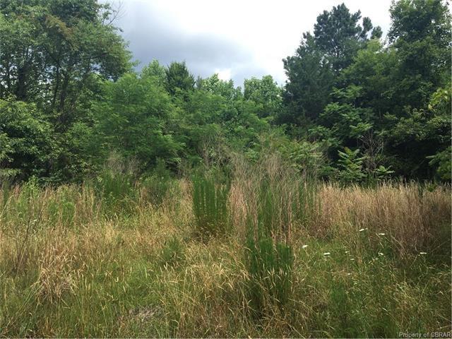 00 Osprey Lane, Locust Hill, VA 23092 (#1723839) :: Abbitt Realty Co.